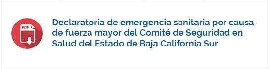 Declaratoria de emergencia sanitaria por causa de fuerza mayor del Comité de Seguridad en Salud del Estado de Baja California Sur