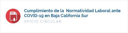 Cumplimiento de la  Normatividad Laboral ante COVID-19 en Baja California Sur